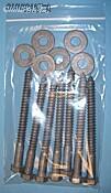 "12x15"" 4mil Ziplock Bags 500/cs"